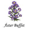 Áster Buffet a Domicílio | Tudo in Casa